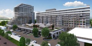 Waterview Phase 2